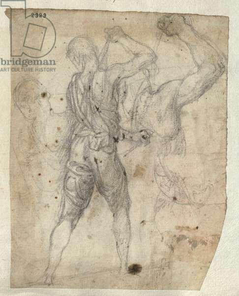 Study of a Flagellator