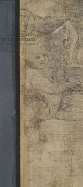 Zeno of Citium, detail of the preparatory cartoon for The School of Athens, 1510 (charcoal and white lead)
