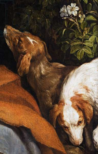 Dogs, detail from The Rest on the Flight into Egypt, 1547 (oil on canvas)