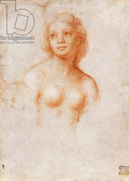 Bust of Nude Young Woman