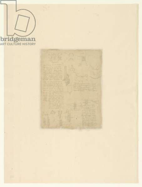 Codex Atlanticus, sheet 101 verso