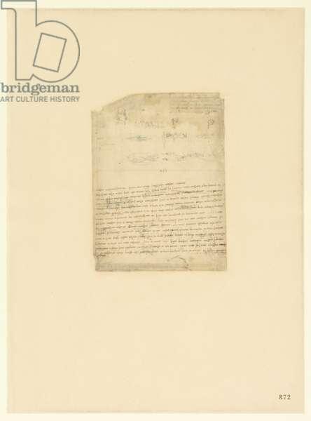 Codex Atlanticus, sheet 872 recto
