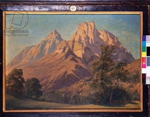 Alpine Scene, c.1853 (oil on canvas)