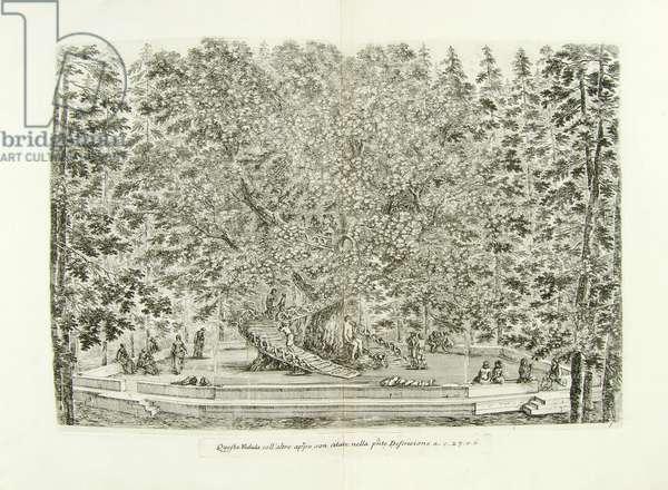 Descrizione della regia villa, fontane, e fabbriche di Pratolino