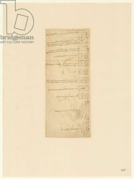 Codex Atlanticus, sheet 347 recto