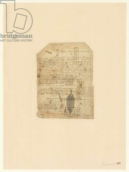 Codex Atlanticus, sheet 197 recto