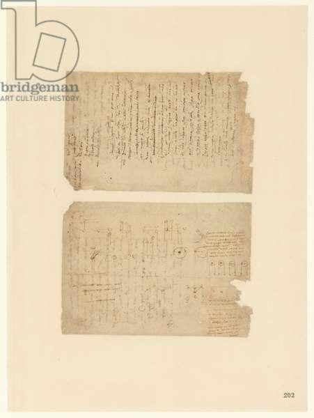 Codex Atlanticus, sheet 202 recto