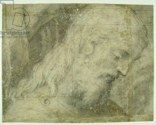 Face of Christ in Profile