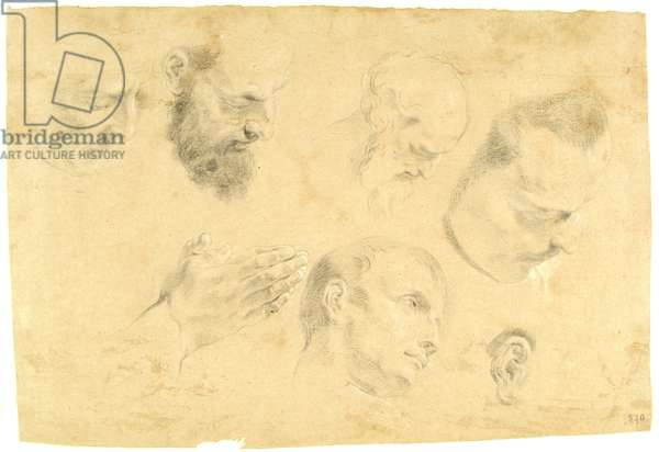 Seven Studies