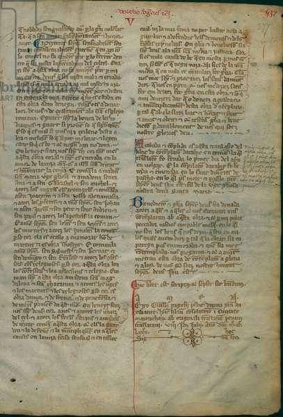 Libre de Contemplació en Déu-Liber contemplationis in Deum