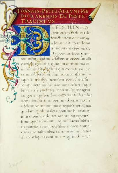 Illuminated first page with initial from the De Peste tractatus