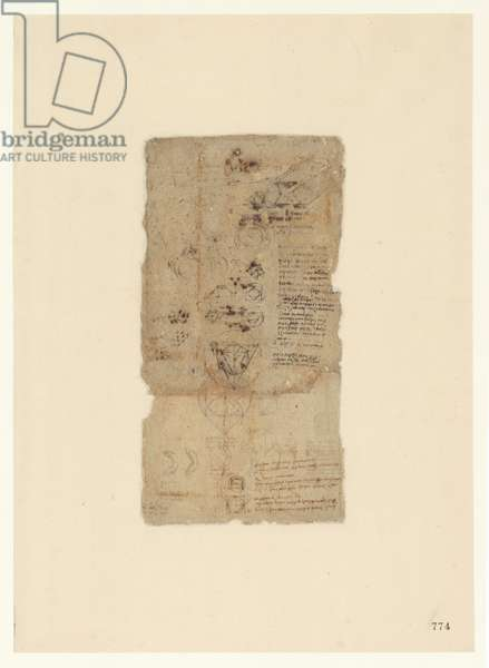 Codex Atlanticus, sheet 774 recto