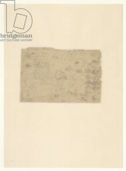 Codex Atlanticus, sheet 487 verso