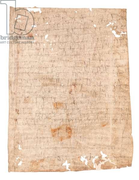 Parchment 4542