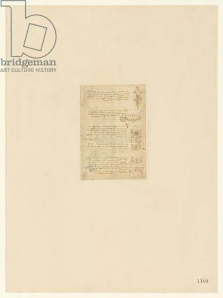 Codex Atlanticus, sheet 1103 recto