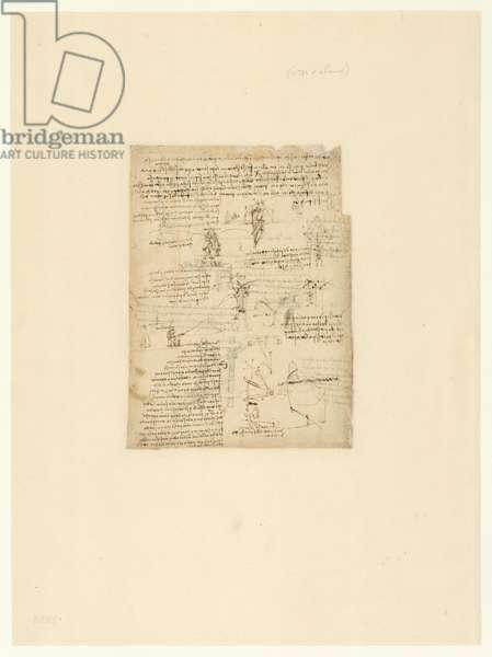 Codex Atlanticus, sheet 1058 verso