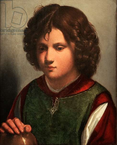 Portrait of a Young Man (oil on panel)