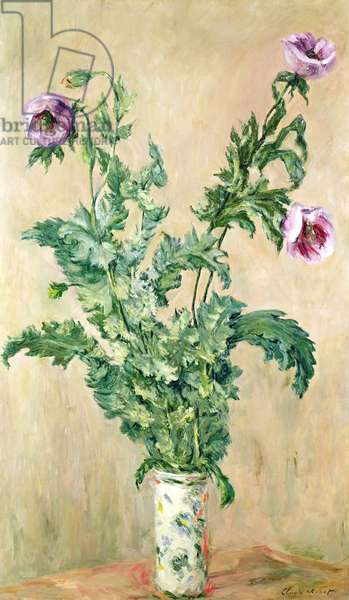 Poppies, c.1882 (oil on canvas)
