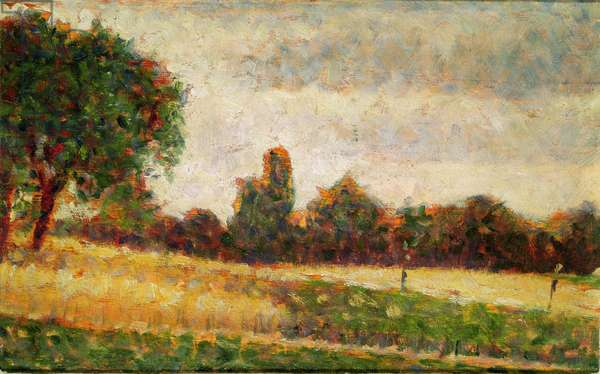 Wheat Field, 1883 (oil on paper)