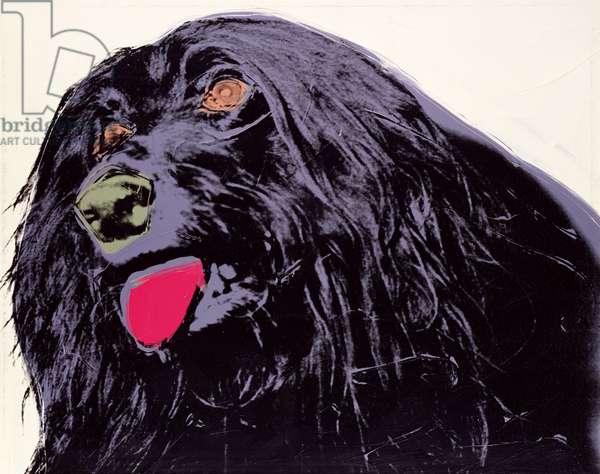 Dog, 1973 (silkscreen and acrylic on canvas)