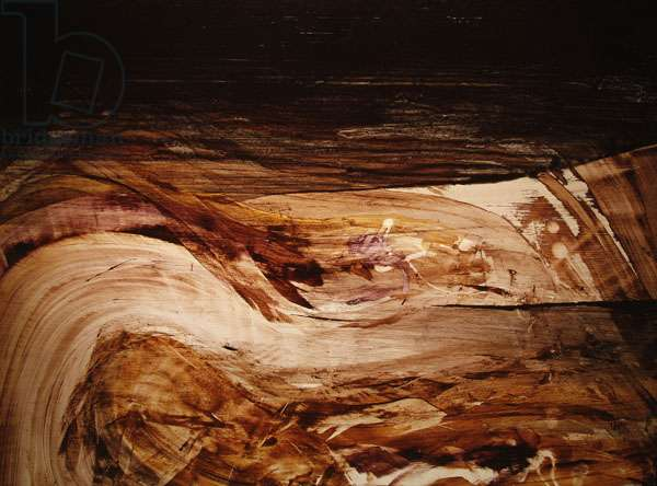 Leda and the Swan, 1962 (oil on board)