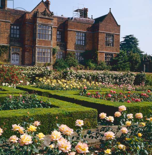 The Rose Garden, Chequers Court, By Kind Permission of the Chequers Trust(photo)