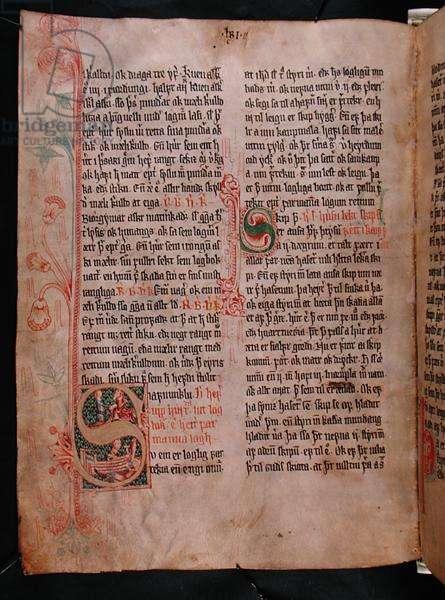 Historiated initials 'S' and 'P', from 'Skarosbok' ('The Book of Skard') c.1350 (vellum)
