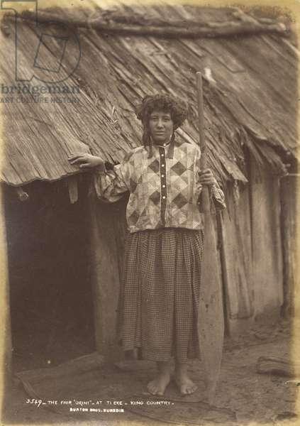 The Fair 'Orini' - At Ti Eke - King Country (albumen print)