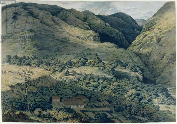 Ravine and River at St. Denis, Bourbon, 1814 (w/c on paper)