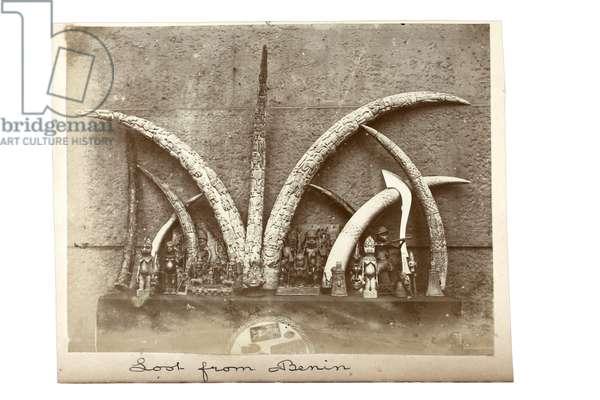 Loot from Benin, c.1897 (gelatin silver print)