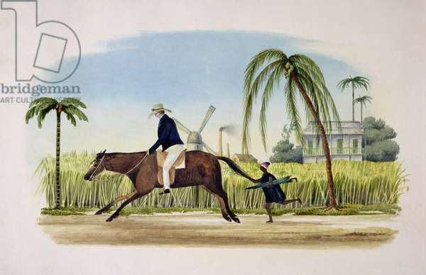 Barbados, c.1830 (w/c on paper)