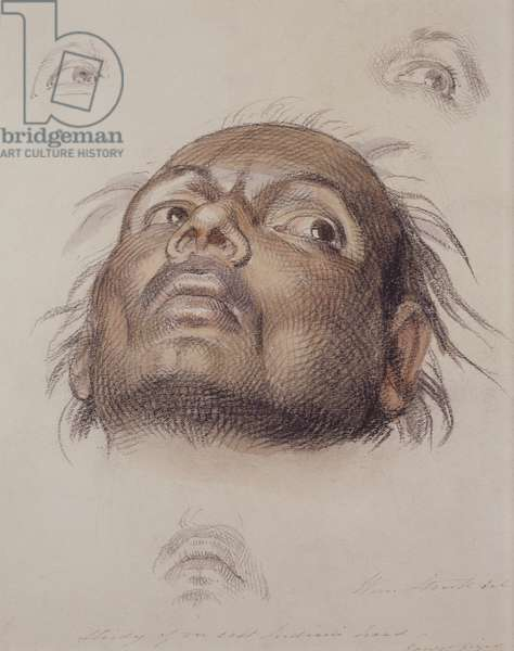Study of an East Indian's Head, c.1875 (crayon and wash on paper)