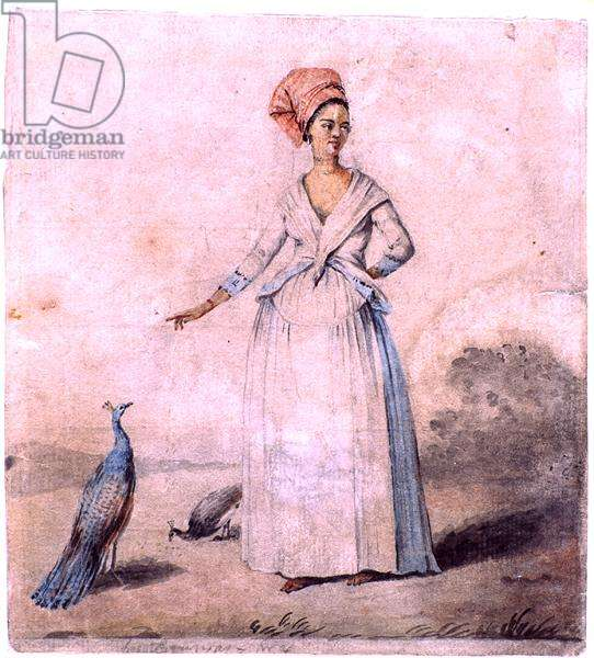 Lady with peacock, c.1770 (ink and wash on paper)