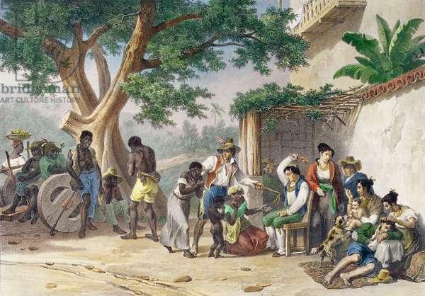 Chatimens Domestiques, engraved by Deroi, 1827-35 (colour litho)