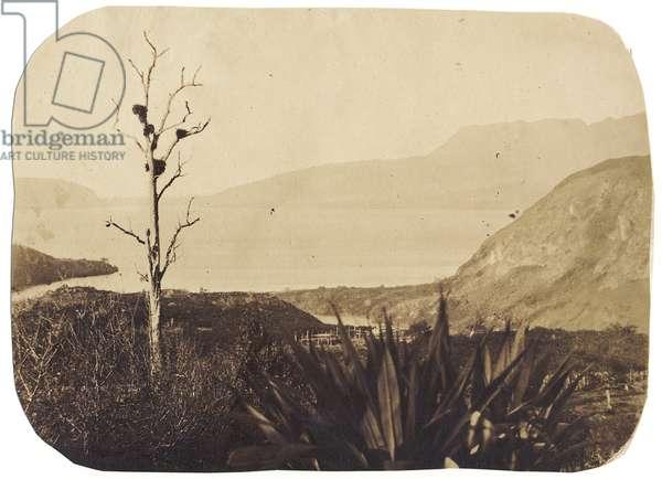 Lake and Mount Tarawera from Te Wairoa, 1860 (albumen print)