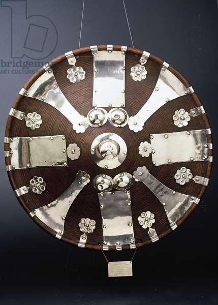 Shield (hide & silver)