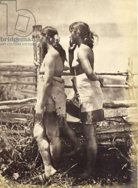 Maori Study, c.1870 (albumen print)