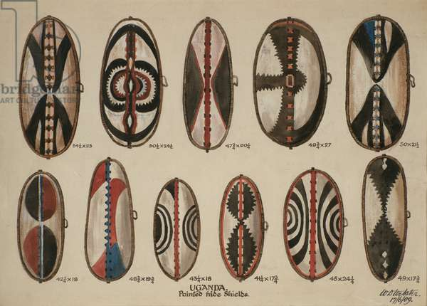 Uganda - Painted hide shields, 1909 (w/c on paper)