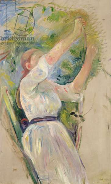 Girl gathering cherries, 1891 (oil on canvas)