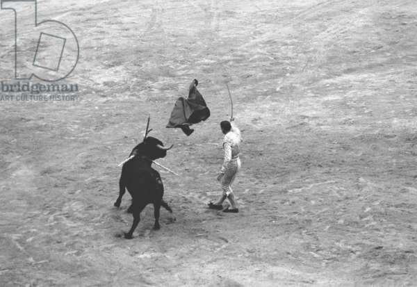 Matador Blazquez gored by a Miura Bull, Palma, Spain, 1963 (b/w photo)