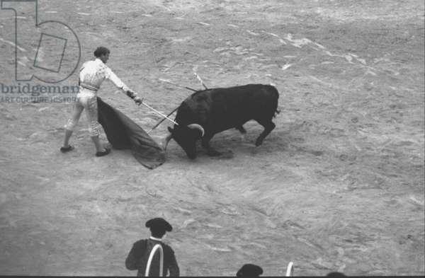 Blazquez kills the bull with his descabello, Palma, Spain, 1963 (b/w photo)
