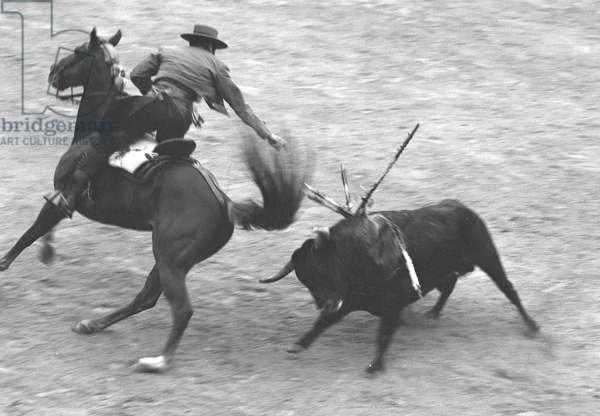 Rejoneador Don Angel Peralta bullfighting from horseback, Barcelona, Spain, 1963 (b/w photo)
