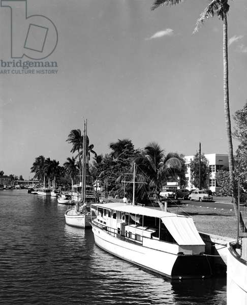 Boats docked on the New River, Broward County, Florida, c.1950 (b/w photo)