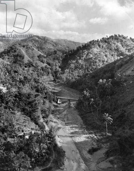 Peaks, valleys and a stream in the Blue Mountains, Jamaica, 1954 (b/w photo)