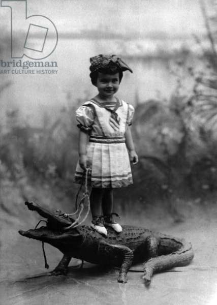 Dallas Mercier Conklin standing on a stuffed alligator, 1908 (b/w photo)