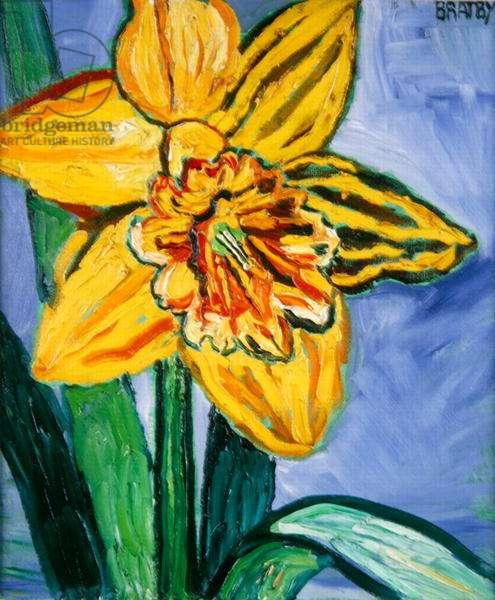 Daffodil (oil on canvas)