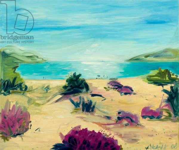Elafonissos, 2008 (oil on canvas)