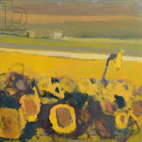 Sunflowers near Puymirol, 2017 (oil on linen)