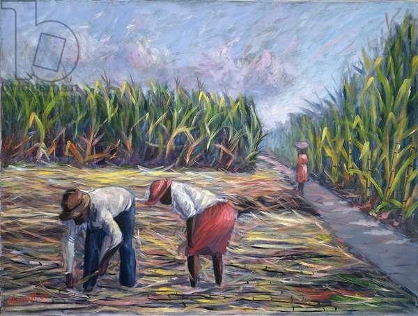 Sugarcane Harvest, 1986 (oil on canvas)