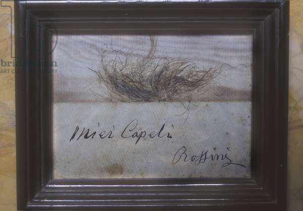 Pubis hair of a marquise given by herself to Gioacchino Rossini/Peli del pube di una marchesa, donati dalla stessa a Gioacchino Rossini -